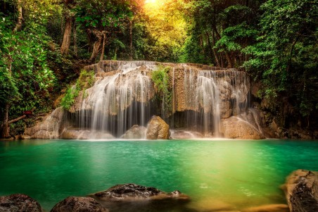 Forest Tree Waterfall Thailand Nature Wallpaper Free Download